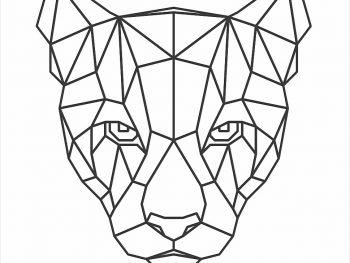 Геометрическая голова пумы