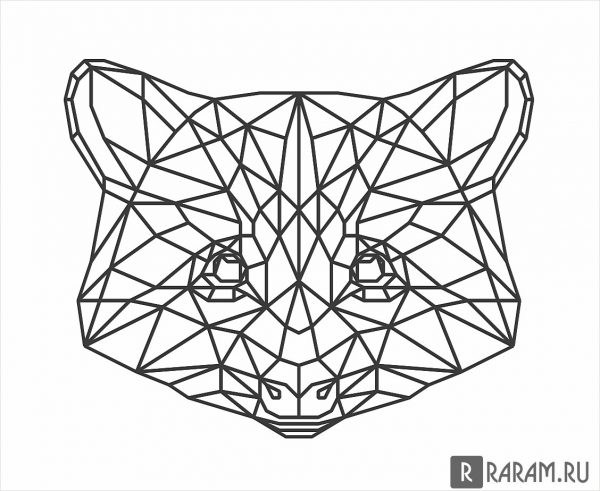 Геометрическая голова енота
