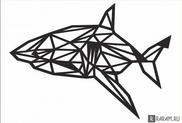 Геометрическая акула