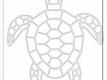 Полная черепаха