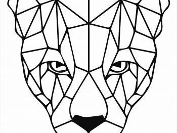 Морда леопарда
