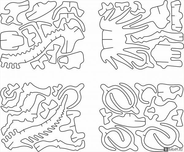 Кости стиракозавра
