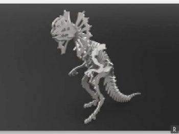 Сборный скелет динозавра