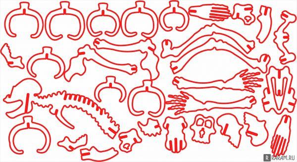 Скелет гориллы