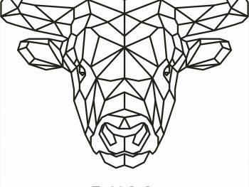 Геометрический бык
