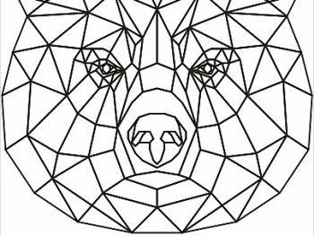 Геометрический бурый медведь