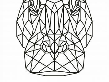 Геометрический бегемот