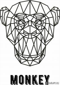 Геометрическая обезьяна