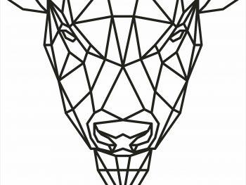 Геометрический бизон