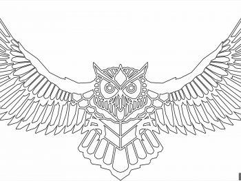 Сова с распростертыми крыльями 2