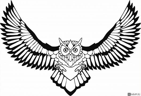 Сова с распростертыми крыльями 4