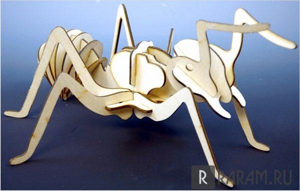 Сборный муравей