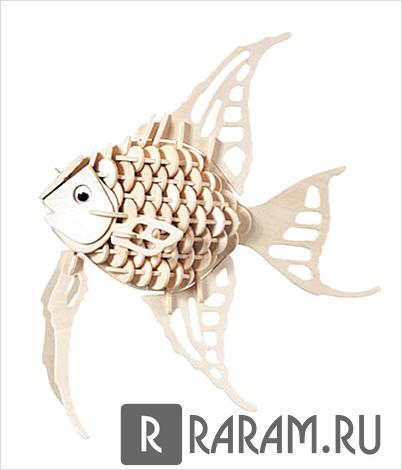 Сборная рыба