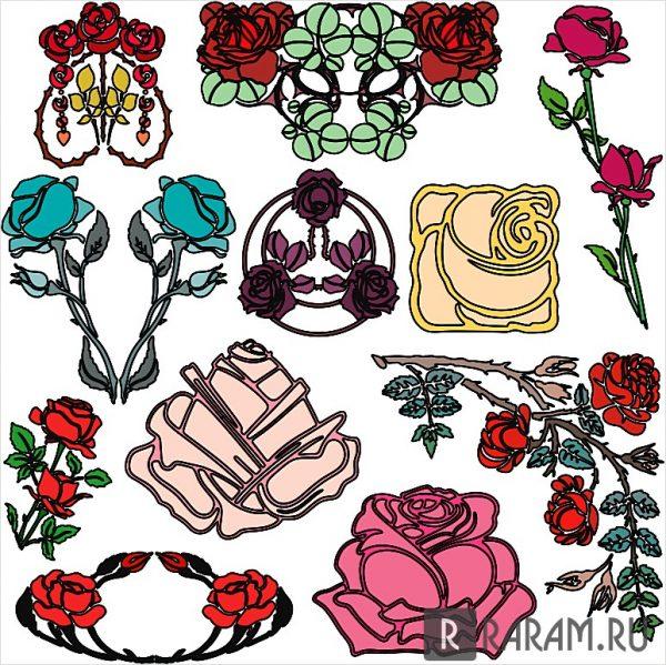Коллекция роз